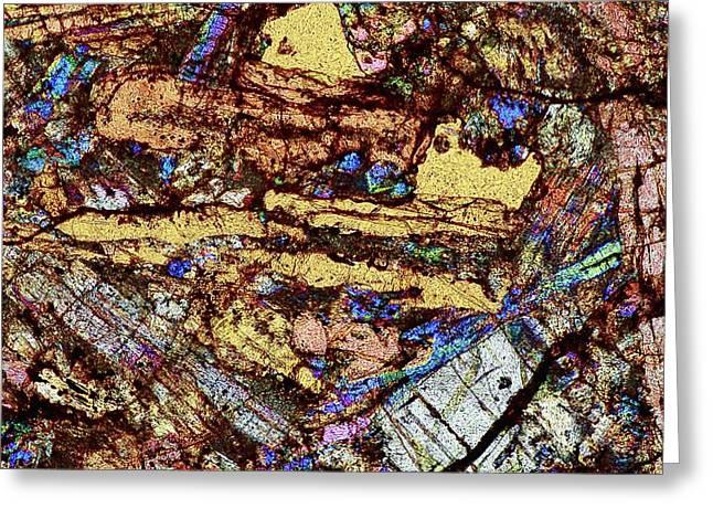 Meteorite Sau 001 Greeting Card by Alfred Pasieka