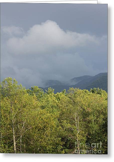 Mountain Mist Great Smoky Mountains Greeting Card