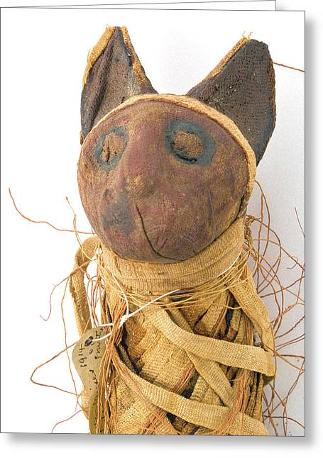 Mummified Cat Greeting Card by Natural History Museum, London
