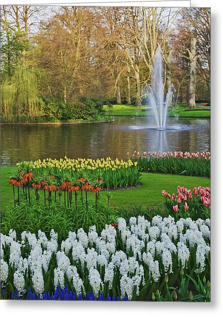 Netherlands, Lisse Greeting Card by Jaynes Gallery