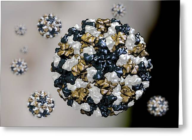 Norovirus Particles Greeting Card