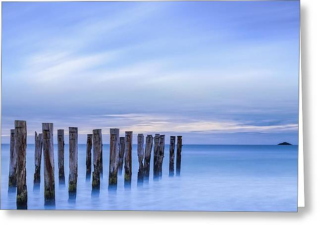 Old Jetty Pilings Dunedin New Zealand Greeting Card