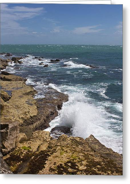 On The Rocks Greeting Card by Shirley Mitchell