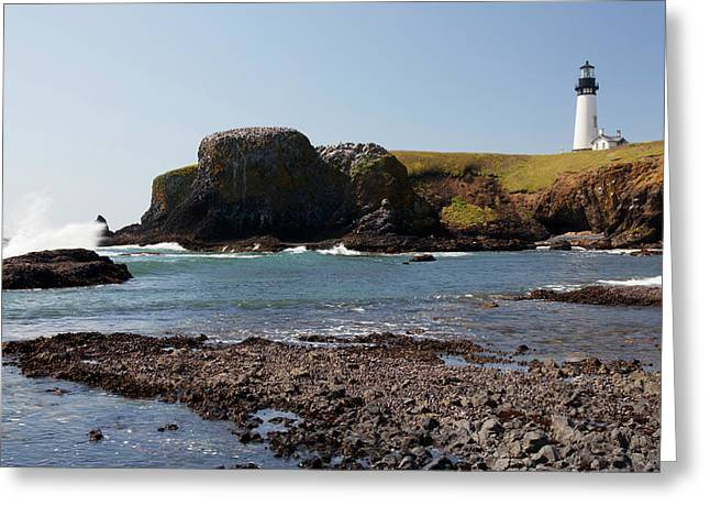 Or, Oregon Coast, Newport, Yaquina Head Greeting Card by Jamie and Judy Wild