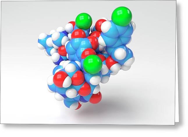 Oritavancin Antibiotic Molecule Greeting Card by Indigo Molecular Images