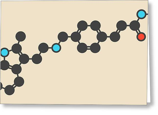 Panobinostat Cancer Drug Molecule Greeting Card by Molekuul