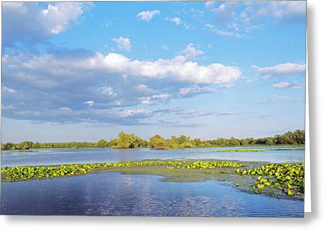 Panorama Of Lakes And Channels Greeting Card by Martin Zwick