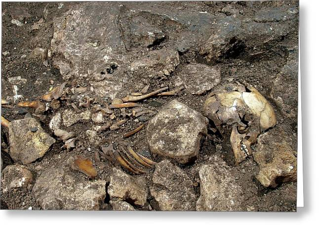 Partially Excavated Human Fossil Greeting Card
