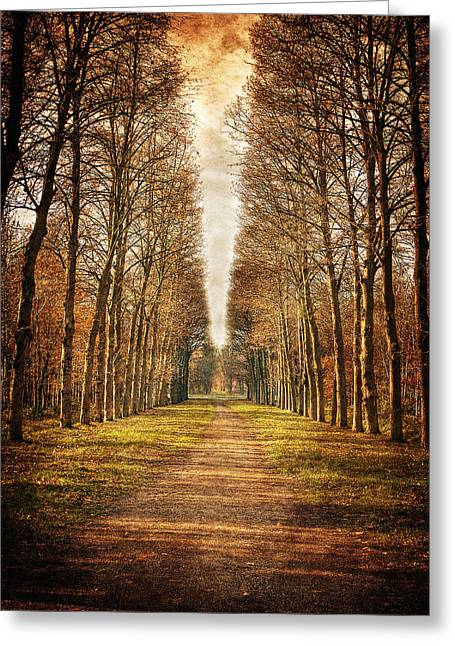 Path In The Woods / Versailles Greeting Card