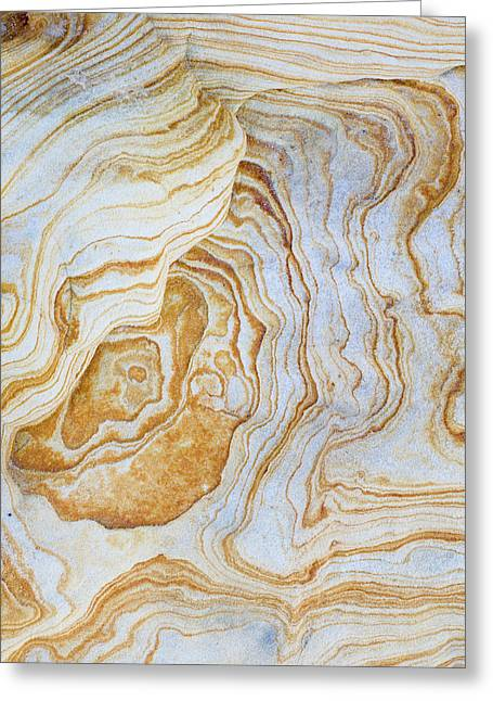 Pattern Of Layers On Sandstone Rock Greeting Card by Panoramic Images