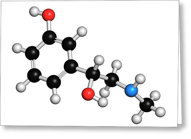 Phenylephrine Decongestant Drug Molecule Greeting Card by Molekuul
