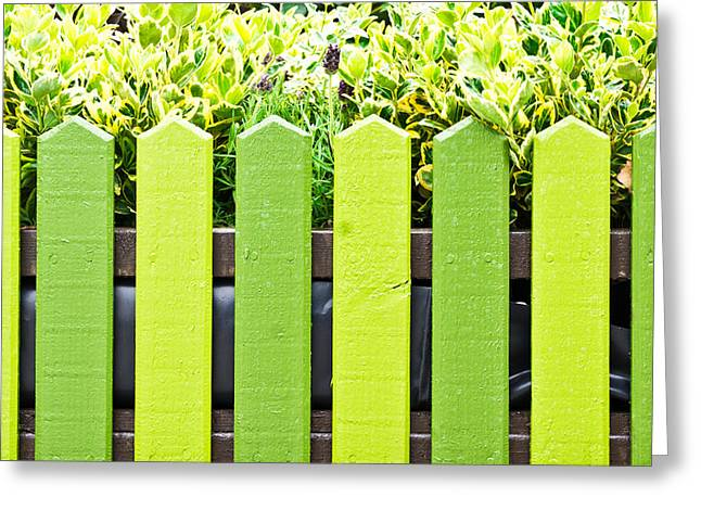 Picket Fence Greeting Card by Tom Gowanlock