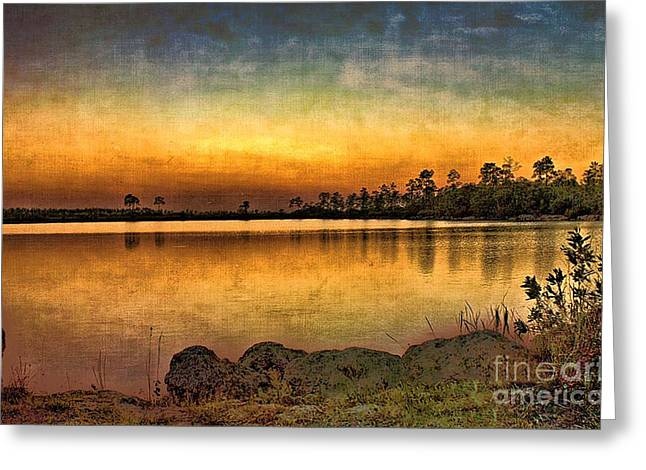 Pine Glades Lake Greeting Card by Anne Rodkin