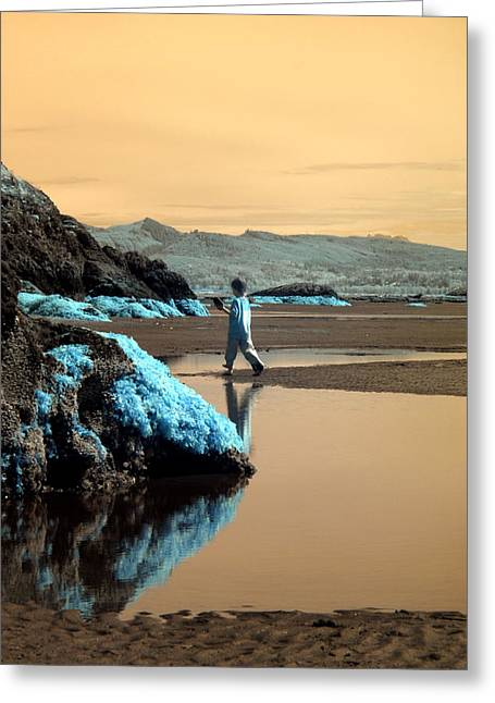 Greeting Card featuring the photograph Quiet Beach by Rebecca Parker