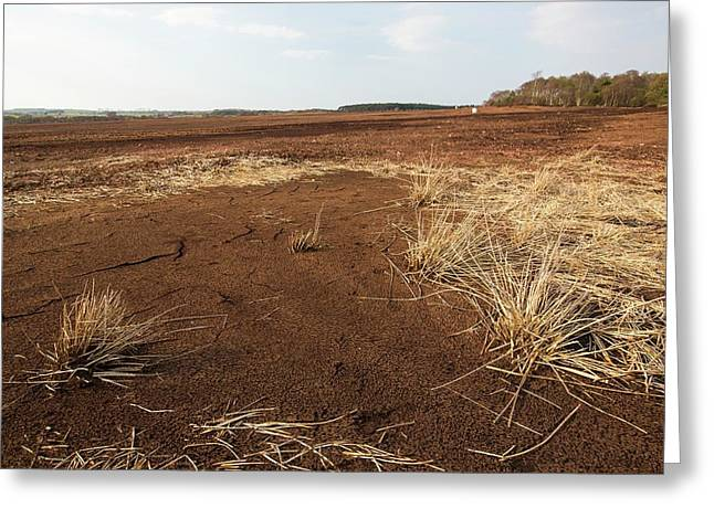 Raised Bog Being Harvested For Peat Greeting Card