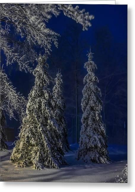 Rib Mountain State Park Snow Greeting Card