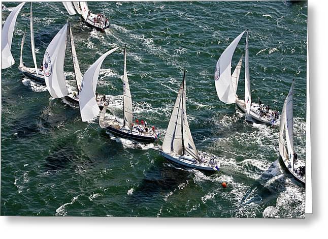 Sailboats In Swan Nyyc Invitational Greeting Card