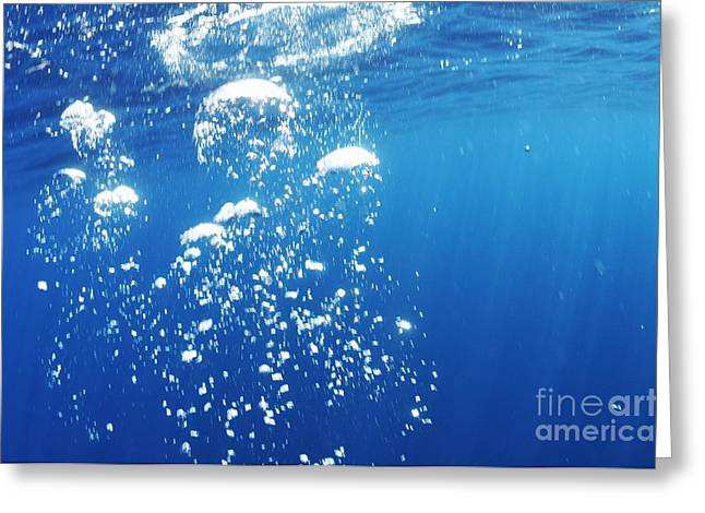 Scuba Diver's Bubbles Rising-up To Surface Greeting Card by Sami Sarkis
