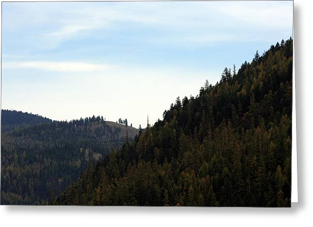Seeley Lake In Montana Greeting Card by Larry Stolle
