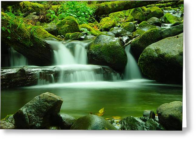 Serenity Greeting Card by Jeff Swan