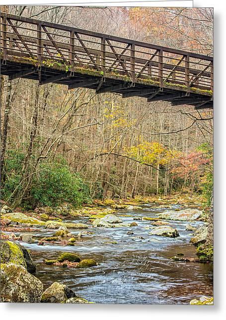 Smoky Mountain Stream 3 Greeting Card