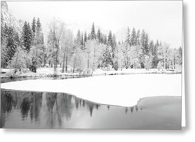 Snow Covered Trees In A Forest Greeting Card by Panoramic Images