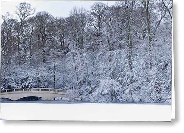 Snow Covered Trees In A Park, Hampstead Greeting Card by Panoramic Images