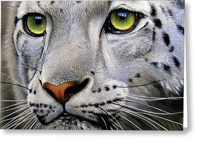 Snow Leopard Greeting Card by Jurek Zamoyski
