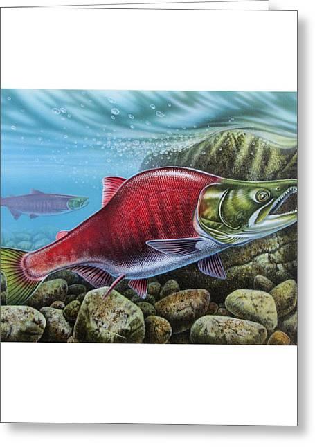Sockeye Salmon Greeting Card by JQ Licensing