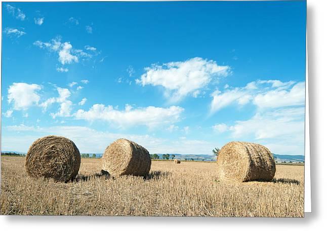 Straw Bales At A Stubbel Field Greeting Card by Svetoslav Radkov