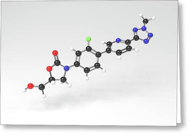 Tedizolid Antibiotic Molecule Greeting Card by Indigo Molecular Images