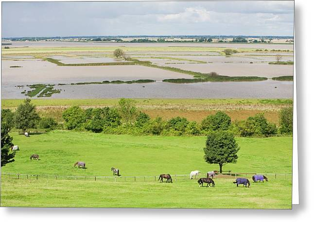The Breach At Alkborough Greeting Card by Ashley Cooper