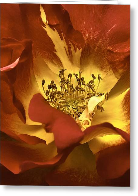 the Heart Of A Rose Greeting Card by Nancy Marie Ricketts