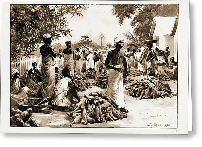 The Royal Niger Companys Expedition Everyday Scenes Greeting Card by Litz Collection
