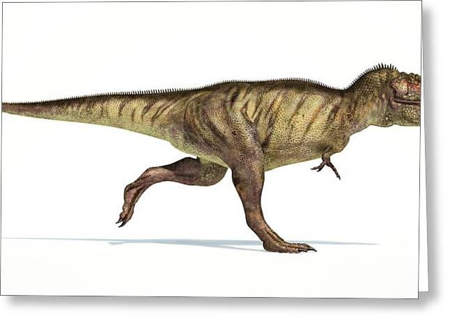 Tyrannosaurus Rex Dinosaur Greeting Card by Leonello Calvetti