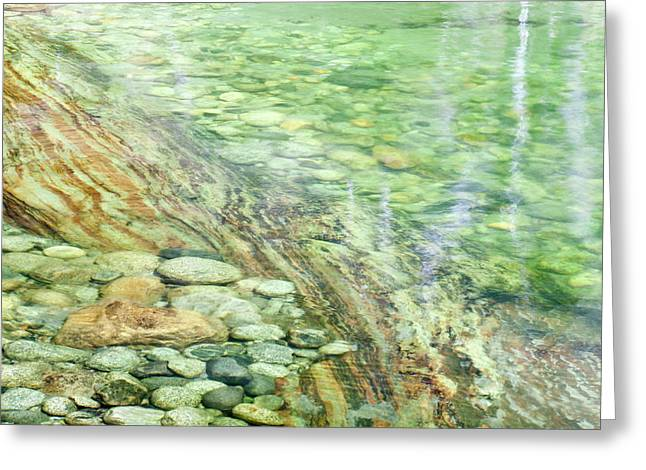 Usa, California, Sequoia National Park Greeting Card by Jaynes Gallery