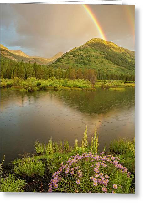 Usa, Colorado, Gunnison National Forest Greeting Card