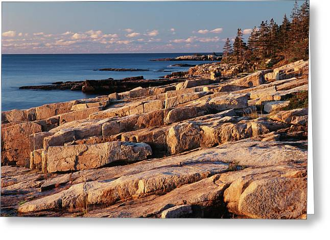 Usa, Maine, Acadia National Park, Mt Greeting Card by Adam Jones