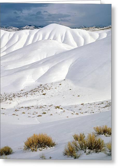 Usa, Oregon, John Day Fossil Beds Greeting Card
