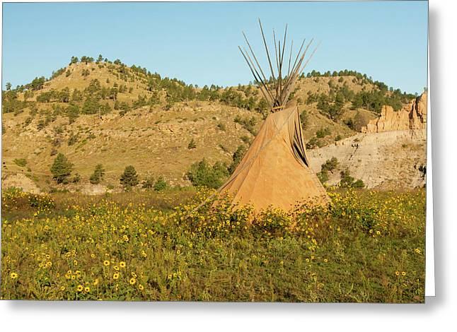 Usa, South Dakota, Wild Horse Sanctuary Greeting Card by Jaynes Gallery