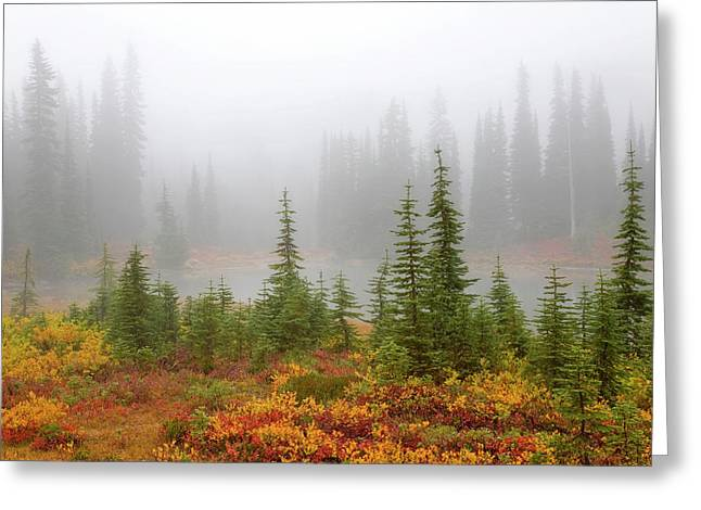 Usa, Washington, Mount Rainier National Greeting Card by Jaynes Gallery