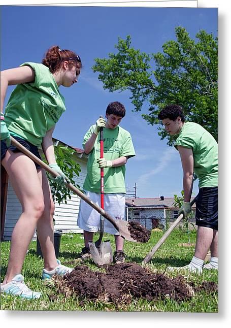 Volunteers Planting Trees Greeting Card