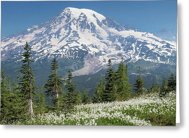 Washington, Mount Rainier National Park Greeting Card
