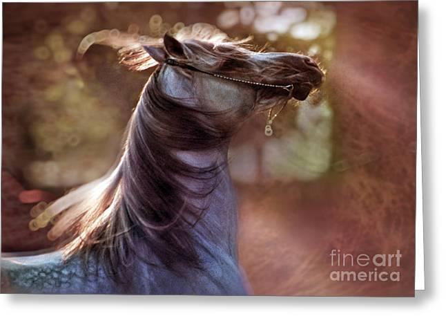 Wild At Heart Greeting Card by Angel  Tarantella