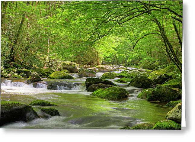 Usa, Tennessee, Great Smoky Mountains Greeting Card