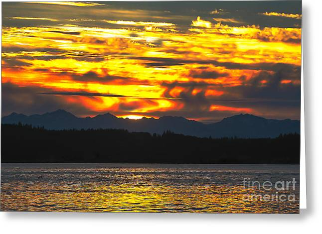 333 Marine Sunrise Greeting Card by Robert Bales