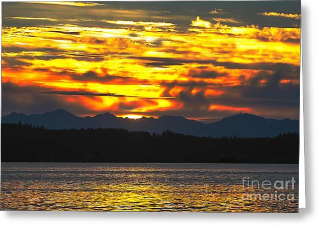 333 Marine Sunrise Greeting Card by Robert Bales
