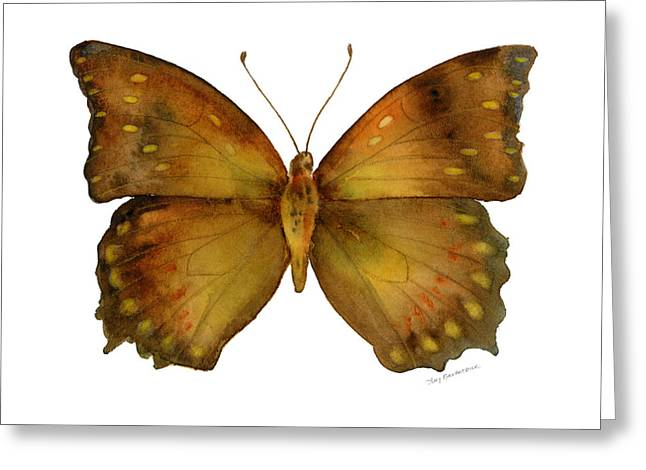 34 Charaxes Butterfly Greeting Card by Amy Kirkpatrick