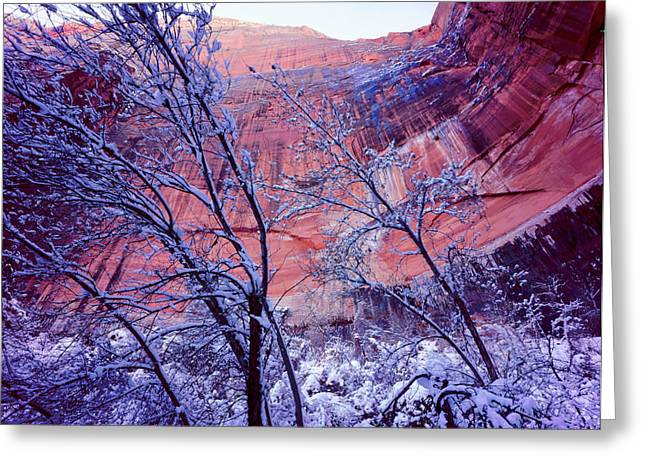 Zion National Park, Utah Greeting Card