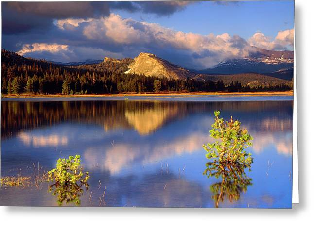 Usa, California, Yosemite National Park Greeting Card